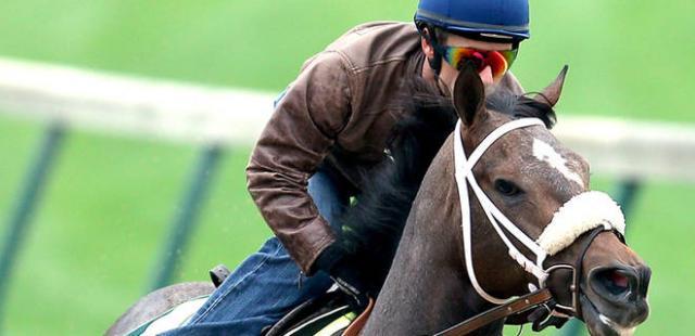 050213-HORSE-Back-in-the-saddle-PI-AM_20130502130008851_660_320.JPG