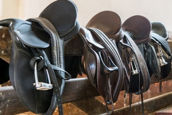 The Different Types of Saddles