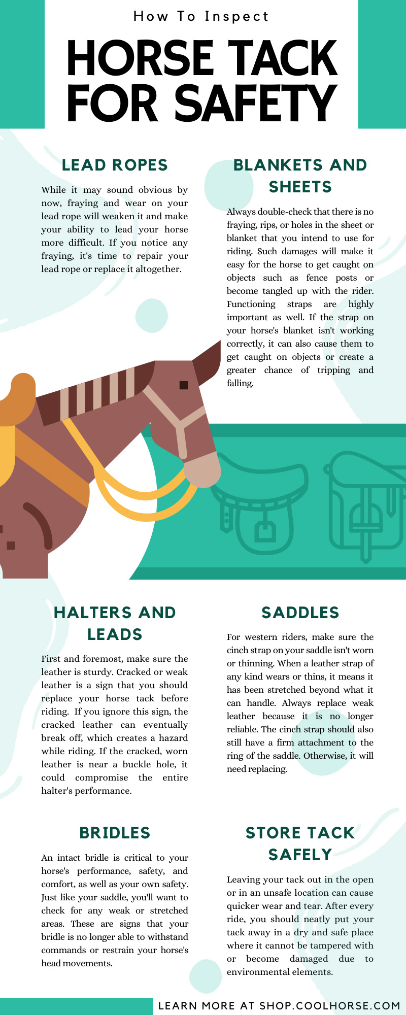 How To Inspect Horse Tack for Safety